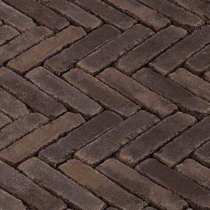 Terra Verona Antika