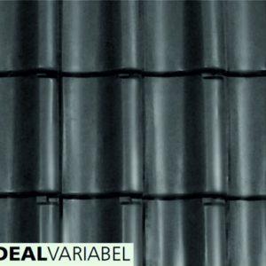 IDEAL VARIABEL NR41